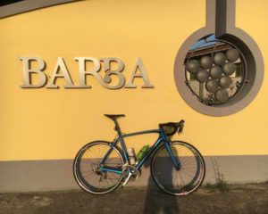 Vini d'Abruzzo, alla scoperta dell'azienda Barba