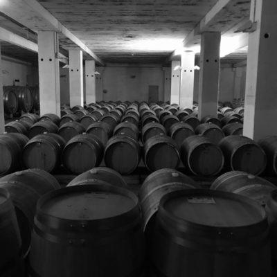 Tenuta Santa Lucia: il vino è donna